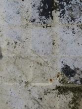 las-setas-sevilla-spain_22125471970_o